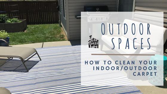 Clean Indoor Outdoor Rug